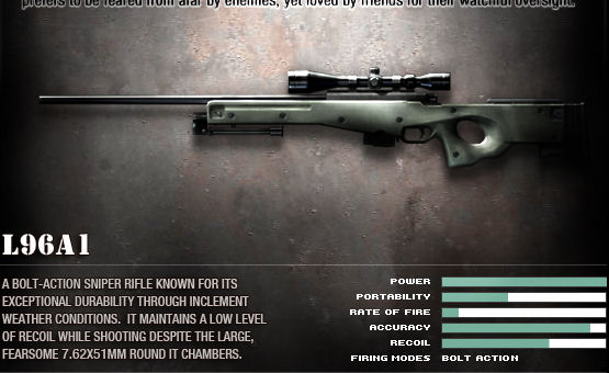 Primary; L96A1 Stats; Not Black Ops stats, just a random picture.