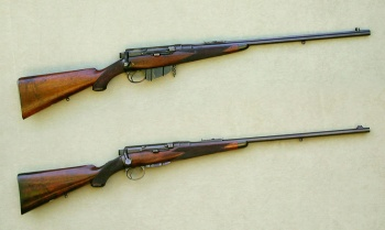 Image result for Lloyd rifle