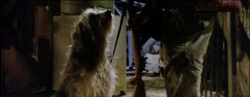 a boy and his dog internet movie firearms database
