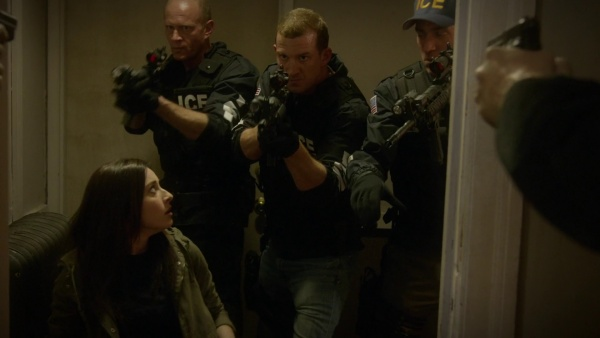 agent fornell ncis